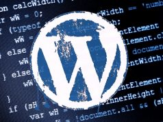 WordPress Hentry Hatası
